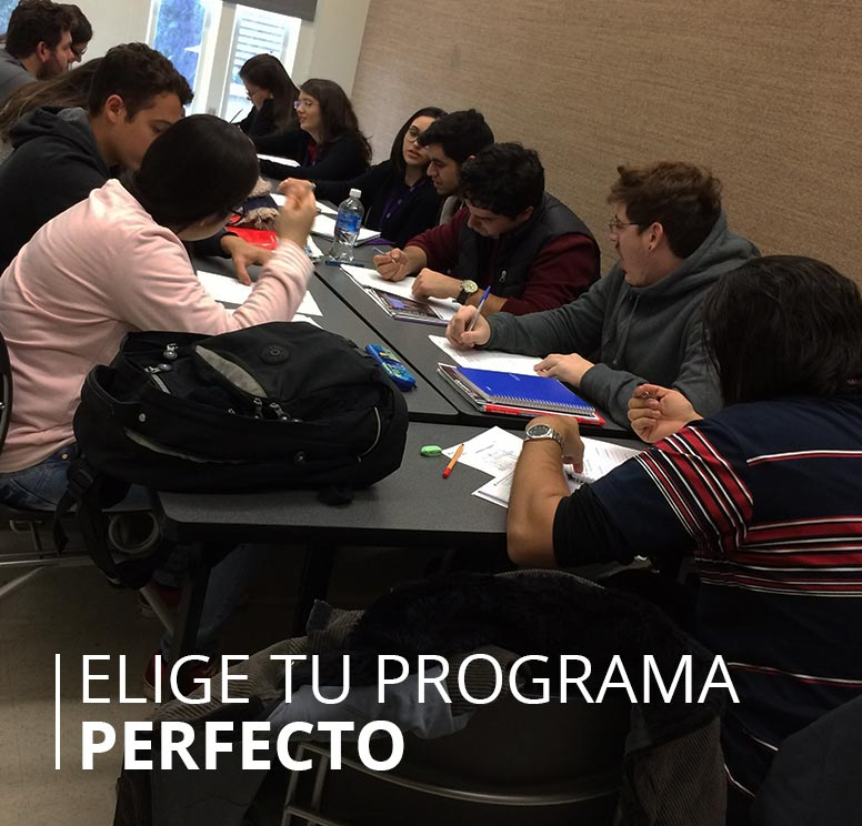 Elige Tu Programa Perfecto